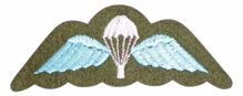 Mil-Com Para Cloth Badge